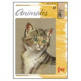 Colección Leonardo Nº 13 Animales