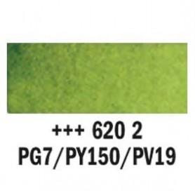 Acuarela Rembrandt 620 Verde oliva 20 ml