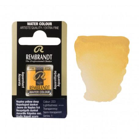 acuarela-rembrandt-medio-godet-serie-1-goya-223-amarillo-napoles-oscuro