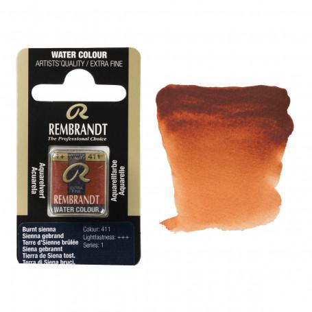 acuarela-rembrandt-medio-godet-serie-1-goya-411-tierra-siena-tostada