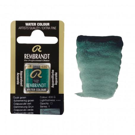 acuarela-rembrandt-medio-godet-serie-1-goya-630-crepusculo-verde