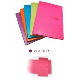Carpeta PaperDESK A4 Violeta